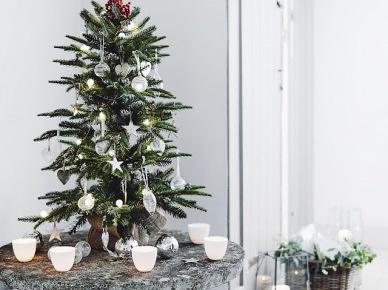 Mała choinka w białej dekoracji  na okjrągły stolik w przedpokoju (47790)