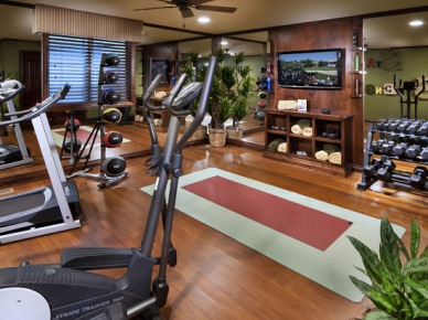 Home Gym Design, Pictures, Remodel, Decor and Ideas (138)