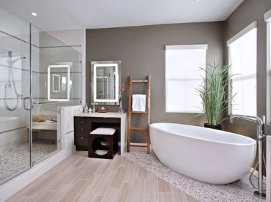 Bathroom Design, Pictures, Remodel, Decor and Ideas (122)